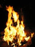 пожар Огонь очень горяч Красивейшая предпосылка Стоковое Фото