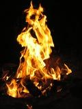 пожар Огонь очень горяч Красивейшая предпосылка Стоковые Фотографии RF
