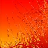 пожар предпосылки Стоковые Фотографии RF