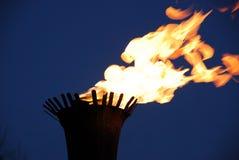 пожар пылает ноча Стоковая Фотография RF