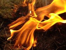 пожар стоковые изображения