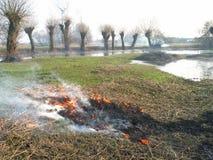 пожар Стоковое Изображение RF
