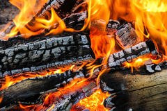 пожар стоковое фото