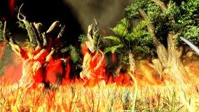 Пожар Bush Стоковые Фото