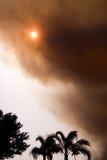 пожар florida стоковые фотографии rf