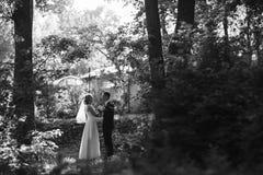 пожененное счастливое пар Стоковая Фотография RF