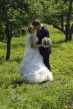 пожененный целовать пар Стоковые Фото