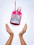 пожертвование крови Стоковые Фотографии RF