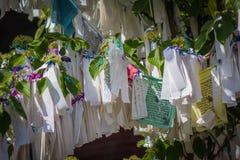 Пожелайте дерево в дворце мира Гааги Стоковое Изображение RF