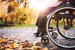 Пожилая женщина в кресло-коляске в природе осени Стоковое Фото