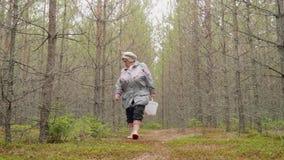 Пожилая женщина идет в лес осени ища грибы Хобби взрослых акции видеоматериалы
