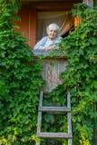 Пожилая женщина на зеленой террасе стоковые фотографии rf
