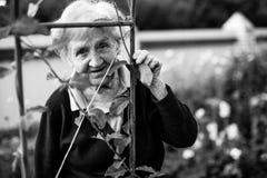 пожилая женщина сада Стоковое Фото