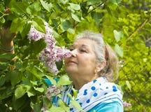 Пожилая женщина с сиренью Стоковые Изображения RF