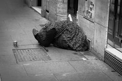 Пожилая женщина умоляя для денег Стоковые Фотографии RF
