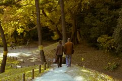 Пожилая пара наслаждаясь прогулкой во время осени в садах Hamarikyu, токио, Японии стоковые изображения rf
