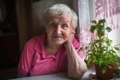 Пожилой уединённый портрет женщины в кухне Стоковая Фотография RF