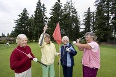 пожилой шутить игроков в гольф Стоковое фото RF
