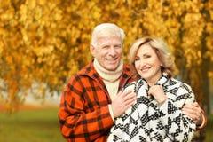 Пожилые пары в парке стоковые фото