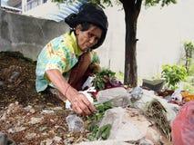 Пожилая женщина охотится или собирать для годных для повторного использования материалов в куче погани в покинутой серии Стоковая Фотография