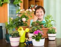 Пожилая женщина позаботить о ее цветки Стоковое Изображение RF