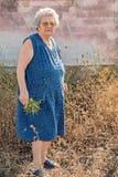 пожилая женщина фокуса глаз стоковая фотография rf