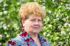Пожилой сад женщины весной Стоковая Фотография