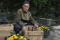 Пожилой фермер принес апельсины для продажи Стоковые Изображения RF