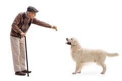 Пожилой человек давая печенье к собаке Стоковые Фотографии RF