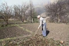 Пожилой человек очищает листья сгребалки сухие Стоковое фото RF