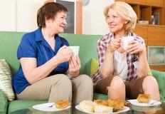 Пожилые женщины на таблице с чаем Стоковые Изображения