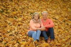 Пожилые пары в парке Стоковые Изображения