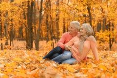 Пожилые пары в парке Стоковое Изображение RF