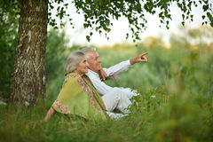 Пожилые пары на природе на лете Стоковая Фотография RF