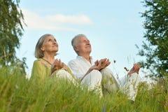 Пожилые пары на природе на лете Стоковые Фотографии RF