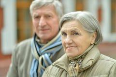 Пожилые пары сидя в природе осени Стоковые Изображения RF
