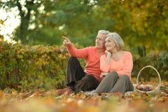 Пожилые пары сидя в природе осени Стоковое Изображение