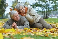 Пожилые пары сидя в природе осени Стоковые Фотографии RF