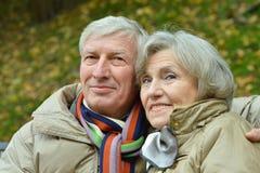 Пожилые пары сидя в природе осени Стоковое Изображение RF