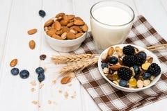 Позавтракайте с зрелыми ягодами, молоком и muesli Стоковые Фотографии RF