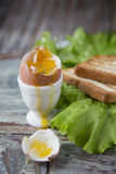 Позавтракайте с яичком и здравицей на деревянной предпосылке Стоковые Фото