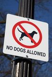 позволенные собаки нет Стоковые Фотографии RF