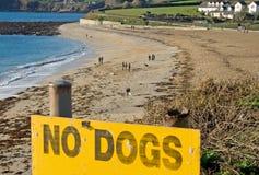 позволенные собаки нет Стоковое Изображение
