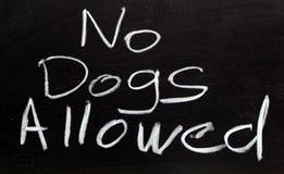позволенные собаки отсутствие знака Стоковое Изображение