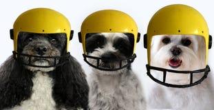 Позвольте игре начать, выследить команду с шлемами футбола стоковые фотографии rf