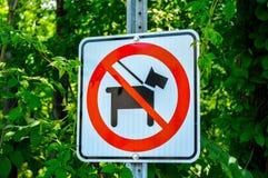 позволенные собаки нет Стоковое фото RF