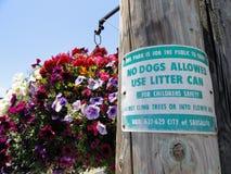 позволенные собаки отсутствие знака Стоковые Изображения RF