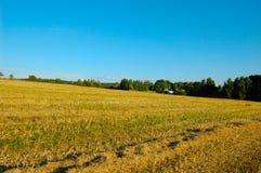 поздним летом сельской местности стоковое фото rf