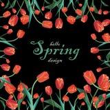 Поздравительная открытка весны с красными тюльпанами Стоковое Изображение