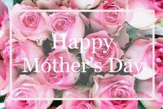 Поздравительная открытка дня матерей пинка и предпосылки белой розы стоковое фото
